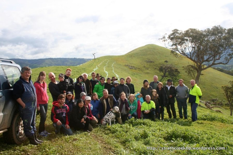 National Tree Day with Landcarers and corporate groups Panachocolate and 15trees.